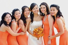 Bride & Bridesmaids   Bouquets   White & Orange