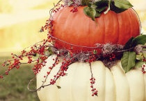 Autumn / all things autumn / by Beverly Roffeydavis http://ourhealthylifestylejourney.wordpress.com Roffeydavis