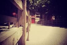 Pamplona: My Photos