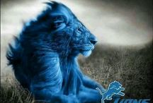 Restore the Roar / Detroit Lions / by Cari Miles