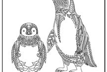 Coloring Pages - Penguins