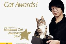 National Cat Awards 2016 / The National Cat Awards 2016. Hear all about the awards and meet the finalists once they're announced.