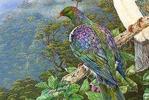 Rotorua Artists
