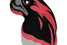 Hawks / School Spirit Store offers thousands of great Custom Mascot ideas with your school/team name/logo and in your colors!!. Great Hawk Shaped Keytags, Pencils, Magnets, Cheer Sticks and Mitts and  Beanies too! Visit us www.schoolspiritstore.com for more information.  Go Hawks!