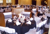 Chair Covers / by Elizabeth Rutledge-Craig