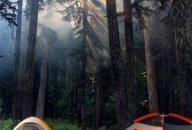♥ Camping ♥