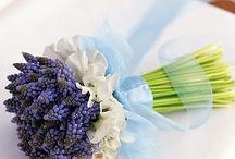 Bukiety/kwiaty cięte