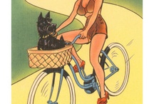 Vintage_B / Bici antiche, d'epoca, accessori...ecc ecc