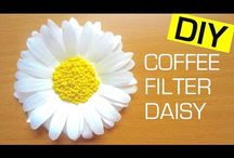 Everything's Coming Up Daisy / Collection of all things daisy