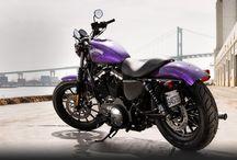 Hard Candy VooDoo Purple / 2014 Iron 883 in Purple! / by Lori Martin