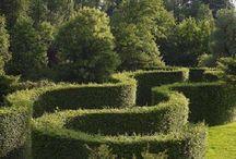 Топиарный сад