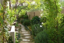 Garden Spaces / These are some of my favorite garden spaces.