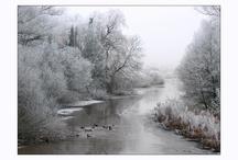 Winter Wonderland / by Adeline Nobel