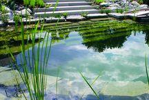 Piscines/Pools
