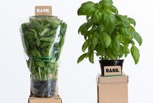 Plants Packaging Design Inspirations