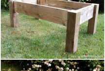 Massive wood coffee table