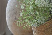 Bian's potten / Voorbeeld foto webshop