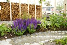 Creative / Ramblings about ornamental and vegetable gardens.