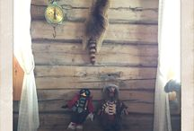 Lodge cabin / Hytte