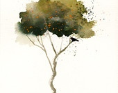Mystical Trees / by Marie Anderson Torres