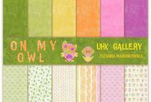 UHK Gallery -2015- ON MY OWL