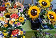 Bilder vom Wochenmarkt (Juli) in Edigheim / Bilder unseres Angebotes auf dem Wochenmarkt in Edigheim