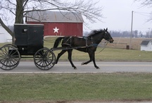 Amish ways / by Cindy Uecker