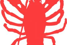 Hello The Lobster