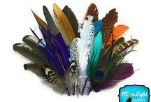Feather Collector Mix Arrangements / http://www.moonlightfeather.com/Collector-Mix_c_327.html