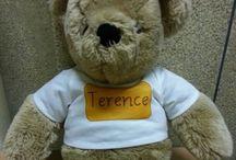 Teddy Bear EduMatch Race
