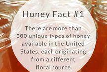 HLF Honey Facts