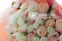 ギフト 生花花束 7,000-10,000円