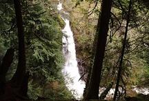 Happy Hiking Trails / by Sunshine Coast Tourism, BC
