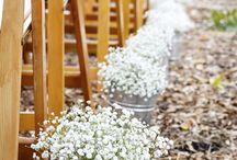 Rachels pretty flower arrangements.