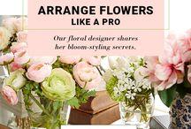 How-to arrange flowers