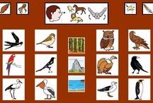 SAAC: Tableros de comunicación / Libros de comunicación