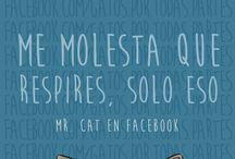 MR.Gatete