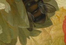 Dutch painting details / Still life