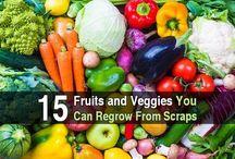 Veggies  you can grow