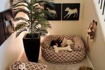 pet corner ideas