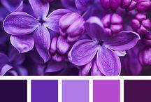 Палитра цветов / палитра, цветы. цветовой круг, сочетание цветов, палитра цветов