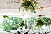 TENT IDEAS / We've found these ideas for tents...make your event extraordinary!