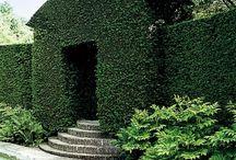 Architektura ogrodów / Architektura ogrodów, ogrody, rośliny.