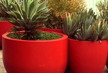 Planters By Color