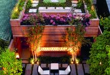 In garden ideas