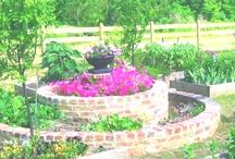 Gardening / by Faith