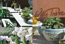 Foodistas - Lieblingslocations / Die Foodistas on Tour!