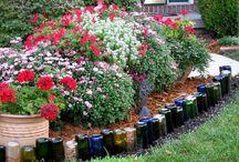 Wine bottles in garden