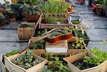 UPCYCLING GARDENS / Jardines realizados con materiales reciclados.