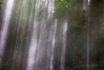 Wonderful nature & place